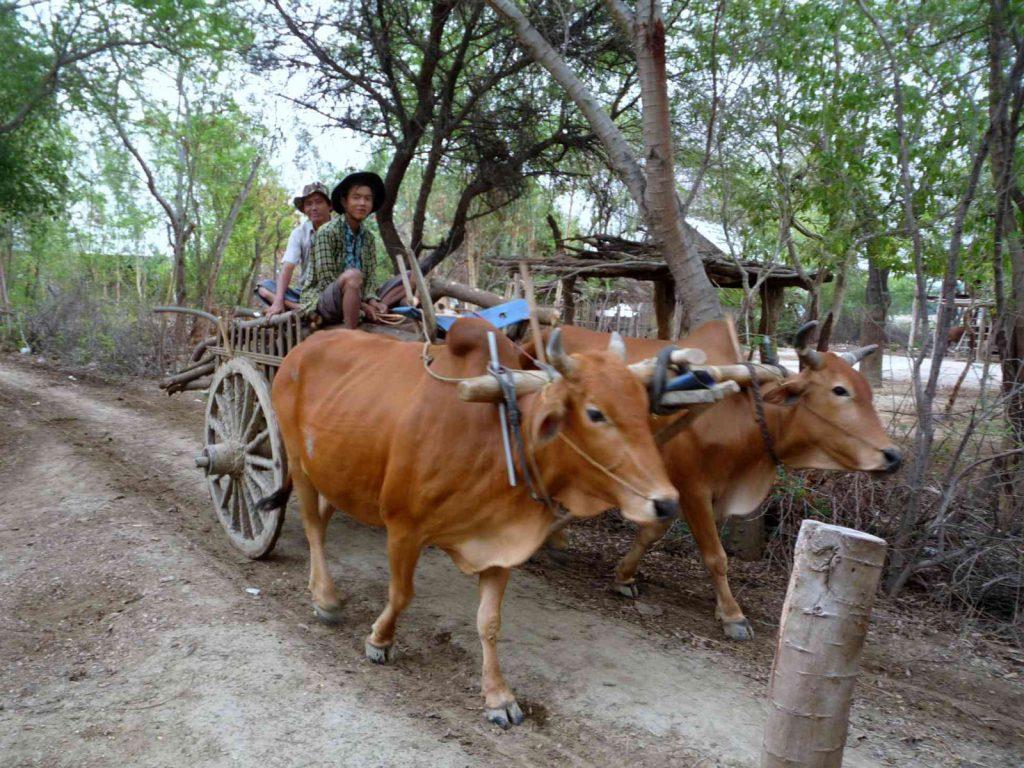 Das traditionelle, stille Dorfleben Birmas gibt es noch